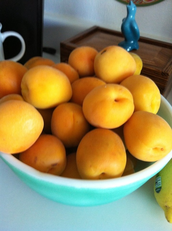 Diane's Apricot &Vanilla Bean Jam - CANNING AND COOKING AT ...
