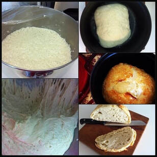 Basic No Knead Crusty Bread